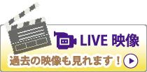 LIVE映像